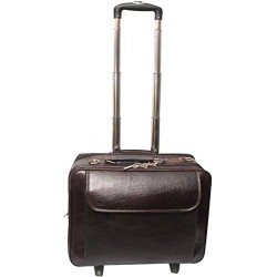 Brown Laptop Roller Case